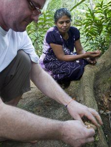 Rolf lässt sich auf Sri Lanka Gewürze und Kräuter zeigen.
